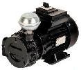 Mungitura – Impianto di mungitura – Mungitrice - 6159009 -EPV 170 DRY 220V - 60HZ - Controllo del vuoto - Pompe Vuoto
